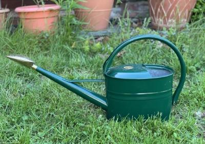 Watering can, green Haws
