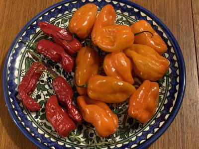 Peppers, Red Ember and Roulette