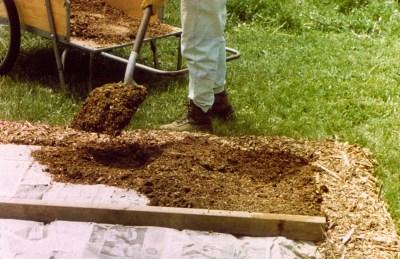 Beginning a garden