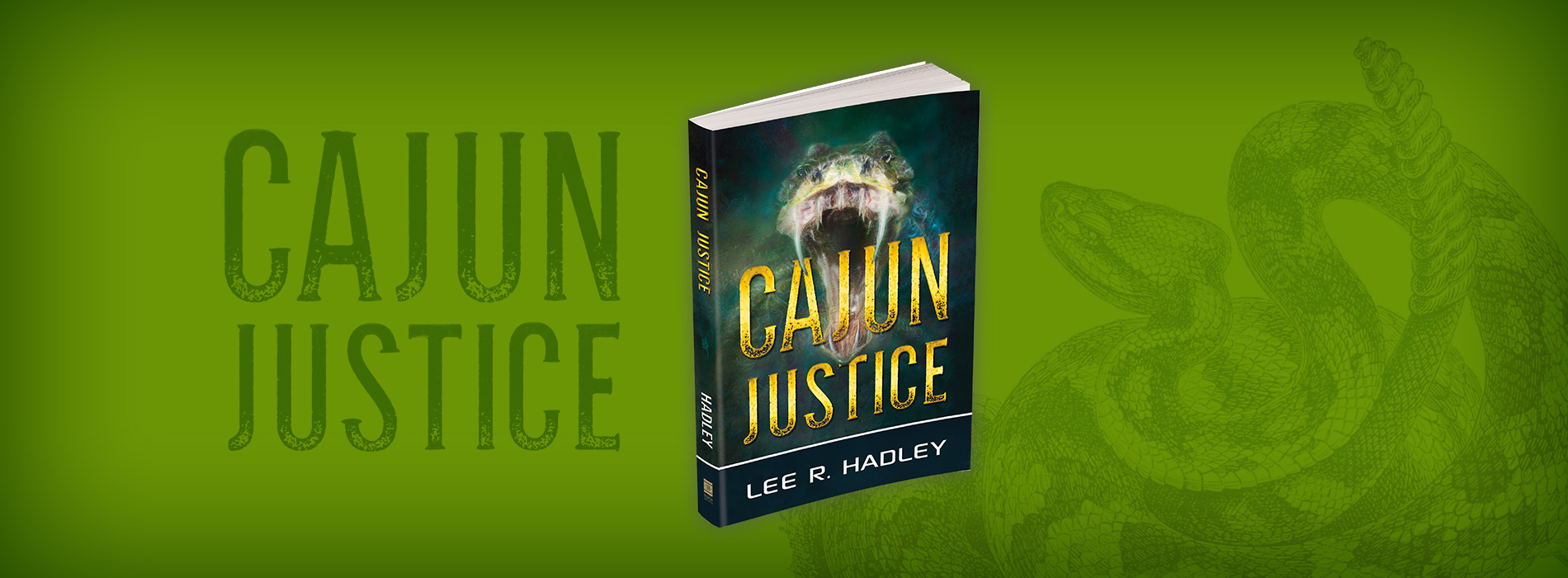 Thriller Novels | Thriller Series | Lee R  Hadley Books