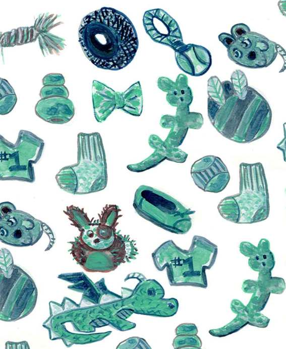 blue and green dog toy illustrations