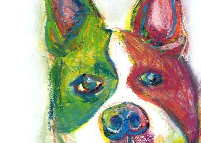 Rainbow Boston Terrier