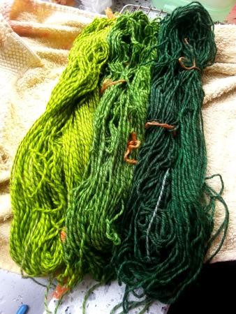Groenen
