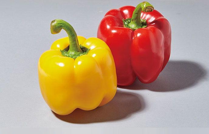 多彩甜椒營養滿點 | 農產品與農友 | 專題文章 | 天天里仁 每一天更安心的選擇