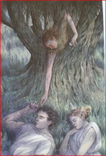 Lisandro e Ermia