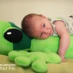 Bébé - Peluche Margouillat - L'effet Péi