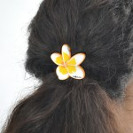 Elastique fleur de frangipanier