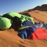 La Mascotte dans le désert marocain