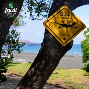 [Jeudi Péi n°124] Sur le littoral de quelle commune se trouve la Plaque Austral 974 ?