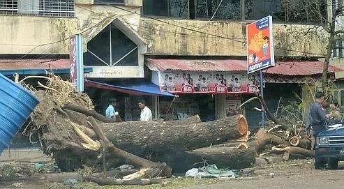 Aidés par les moines autorisés à sortir de leurs monastères pour charrier les débris et dégager les rues de Rangoun, les Birmans continuaient hier à s'organiser pour aider les survivants du cyclone.