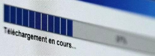 La moitié des Français pirate<br/>des œuvres sur le net<br/>