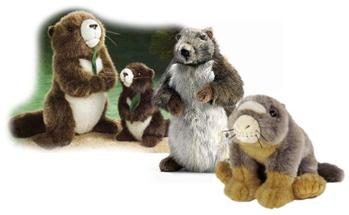 Marmot soft toys