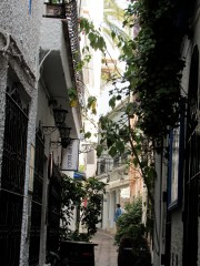 Wandering in Andalusia