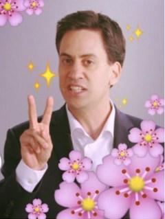 Milibae the magic kawaii politician