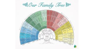 Now Every Full-Service Project Includes a Free Family History Chart