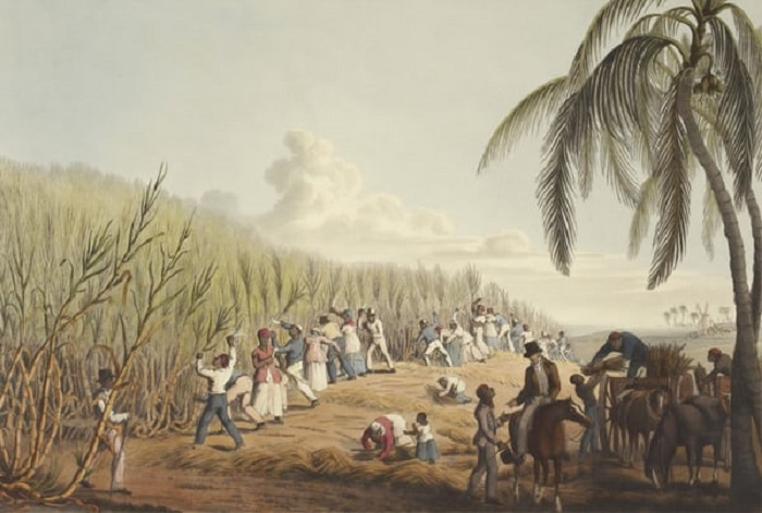 Slavery and Forced Labour