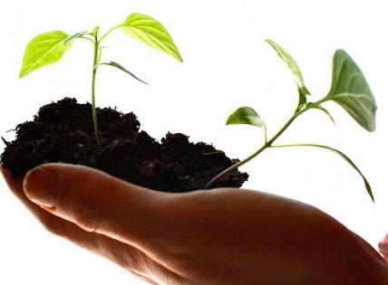Consulenza Avvio Business: cosa è e a chi serve