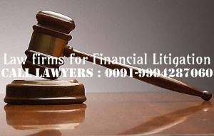 Financial dispute Lawyers in Chennai