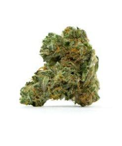 apple fritter marijuana