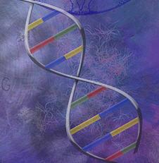DNA.helix