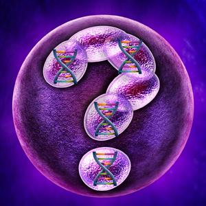 Genetic Questions