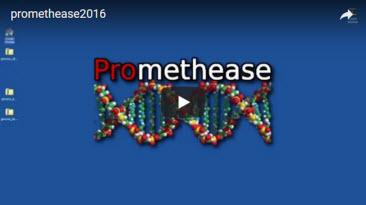 Promethease