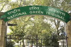 Submit report on hotels at Mahipalpur: NGT to Delhi govt
