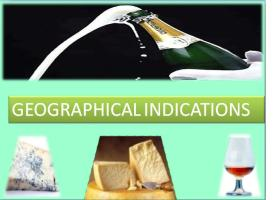 What is the difference between a geographical indication and an indication of source?
