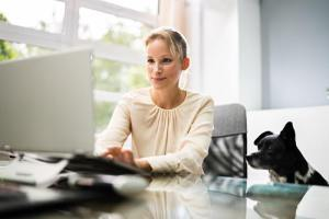 Teamassistenz Empfang Notariat