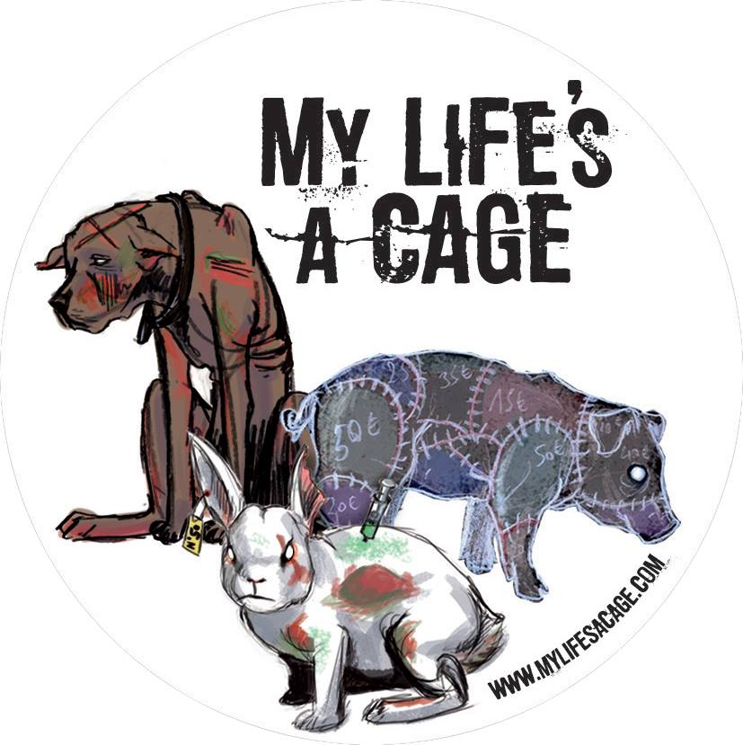 A film, a song for animals, the nature & human beings - Un film, une chanson, une conférence pour les animaux, l'environnement & les humains