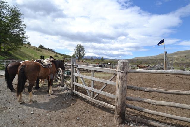 Hotel_Las_Torres_Chile_Patagonia 16
