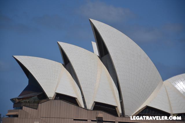 Sydney_low_cost_14