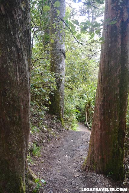 Tongariro-Alpine-Crossing-47
