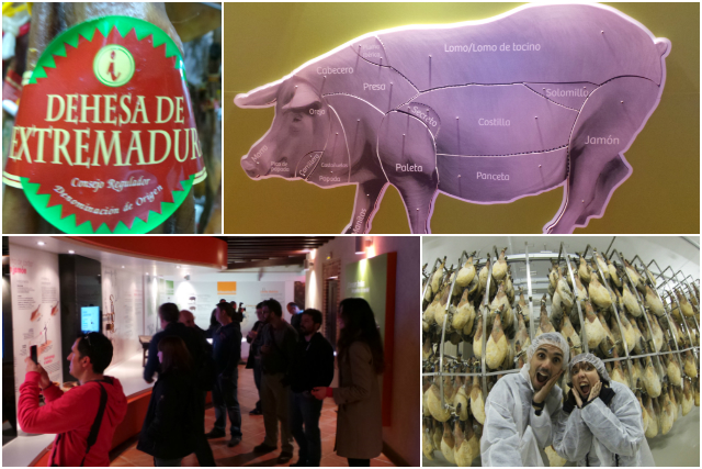 higuera-la-real-centro-interpretacion-cerdo-iberico-secadero-cayetano-pantojo
