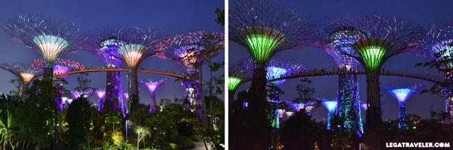 super-trees-rhapsody-singapore