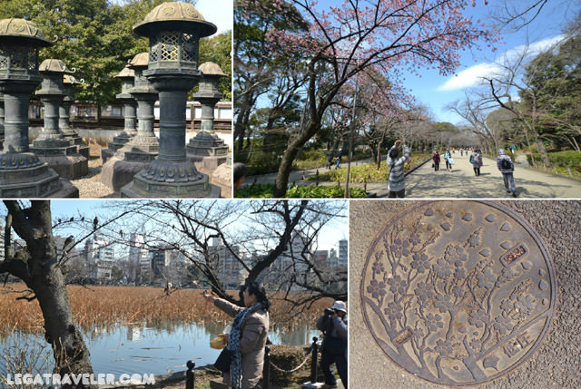 parque-ueno-tokio