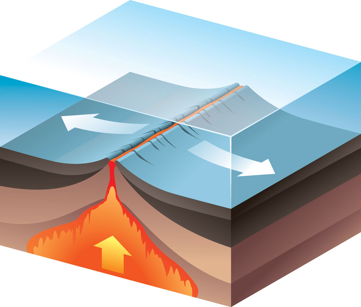 Seafloor Spreading And Subduction Science Games