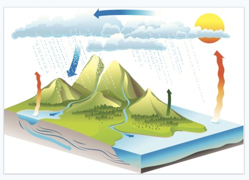 small resolution of diagram for the water cycle