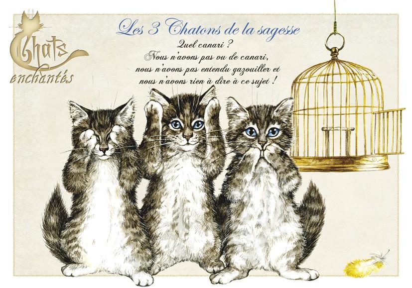 Carte Postale Chat Les 3 Chatons De La Sagesse