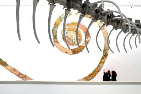 domus-08-baton-serpent-1