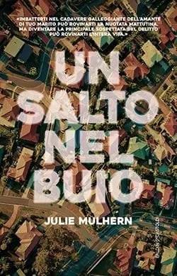 Recensione di Un salto nel buio di Julie Mulhern