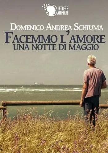 Recensione di Facemmo l'amore una notte di maggio di Domenico Andrea Schiuma