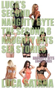 Luca's Second Naughty Byte: The Second 8 Naughty Bits Sex Stories
