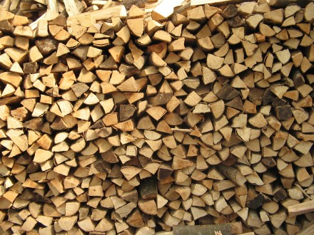 tipi di legna