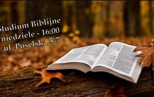 Studium Biblijne – niedziele 16:00