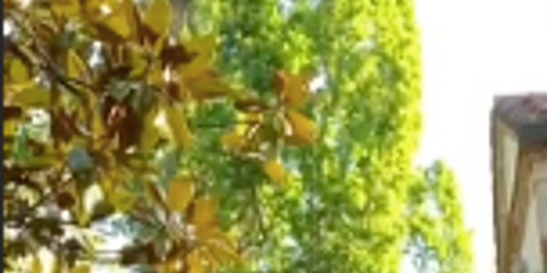 David Hallyday, une sublime propriété au Portugal, la vérité sur la photo diffusée