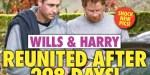 Kate Middleton, William, retrouvailles secrètes avec Harry après 298 jours de séparation (photo)