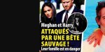 Meghan Markle et Harry, attaqués par une bête sauvage, leur famille est en danger
