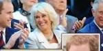 Prince Harry, embarras à l'anniversaire William, le mari de Meghan Markle supprimé d'une photo officielle