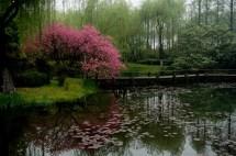 GrandBondMilieu_Hangzhou_5